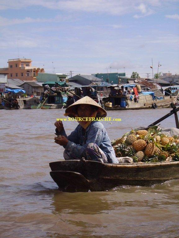 Can_Tho-Marche_flottant-Bateau_ananas.JPG