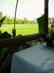 Hoi An<br>Hotel Thien Than<br>Terrasse