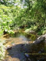 My Son-Ruisseau